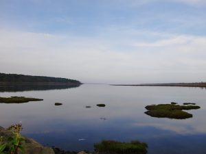 ログコテージ前から風蓮湖を望む