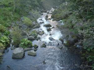 心地よい川のせせらぎ
