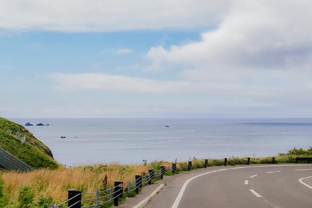 道路は東海岸沿いを縦断しています