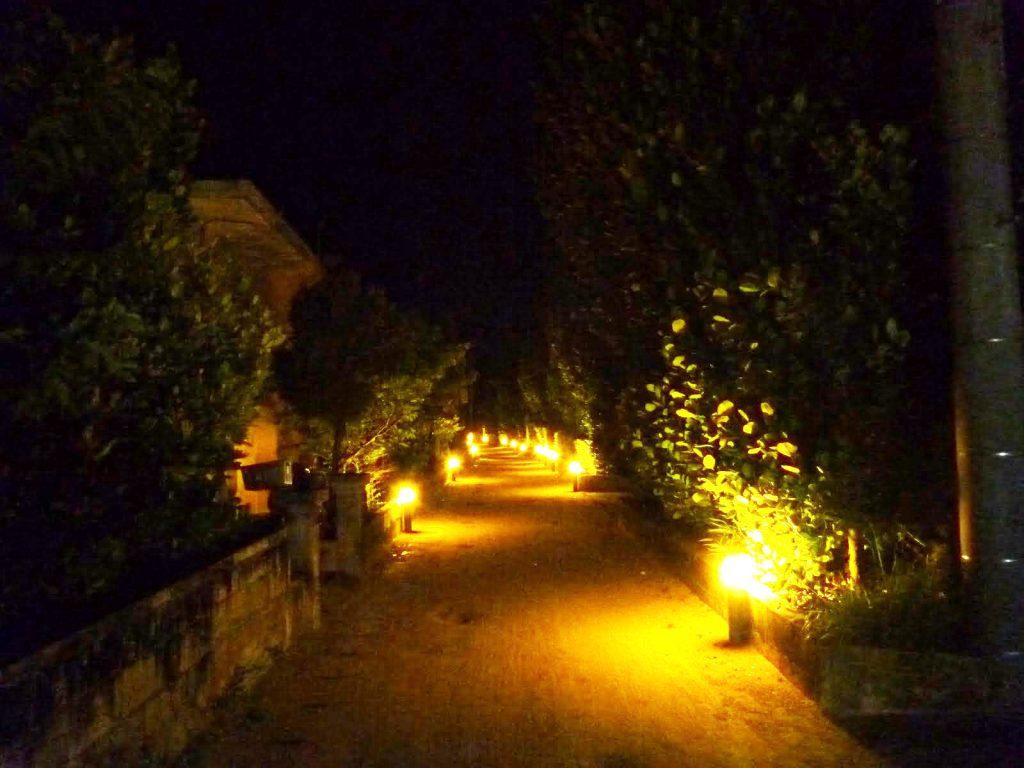 村道のライトアップ