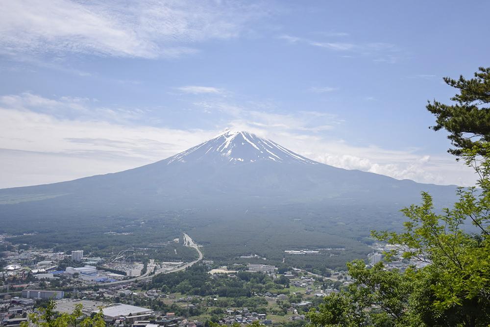 よっ、日本一!