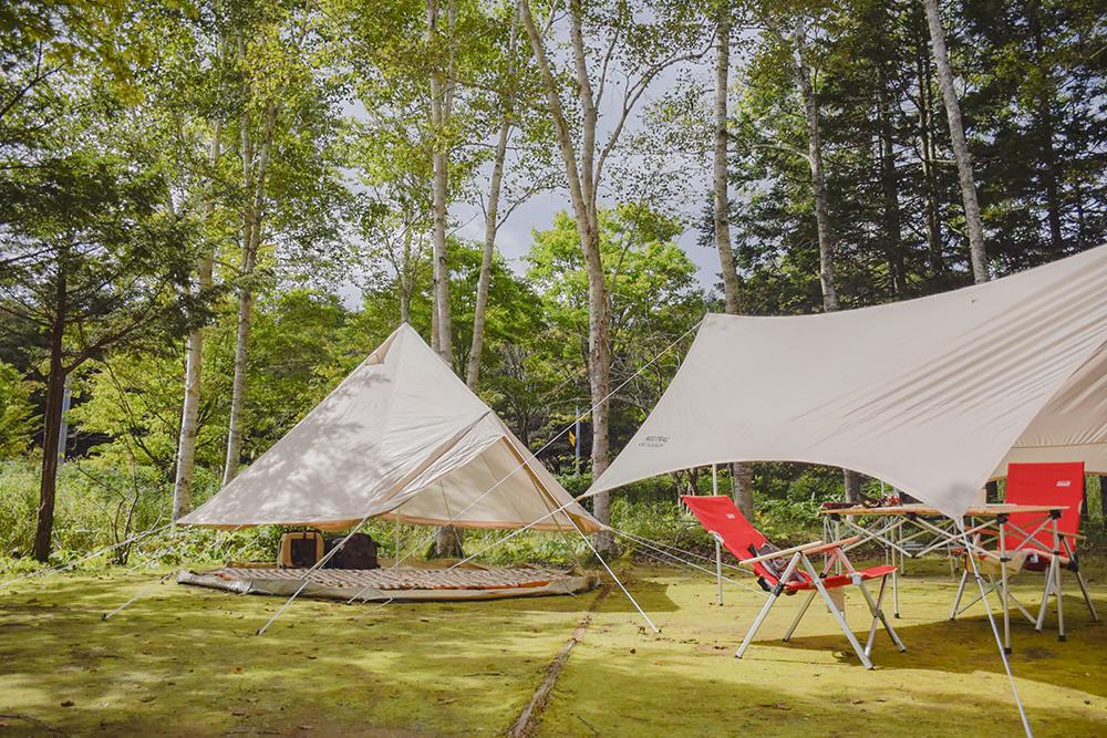 場 白老 キャンプ