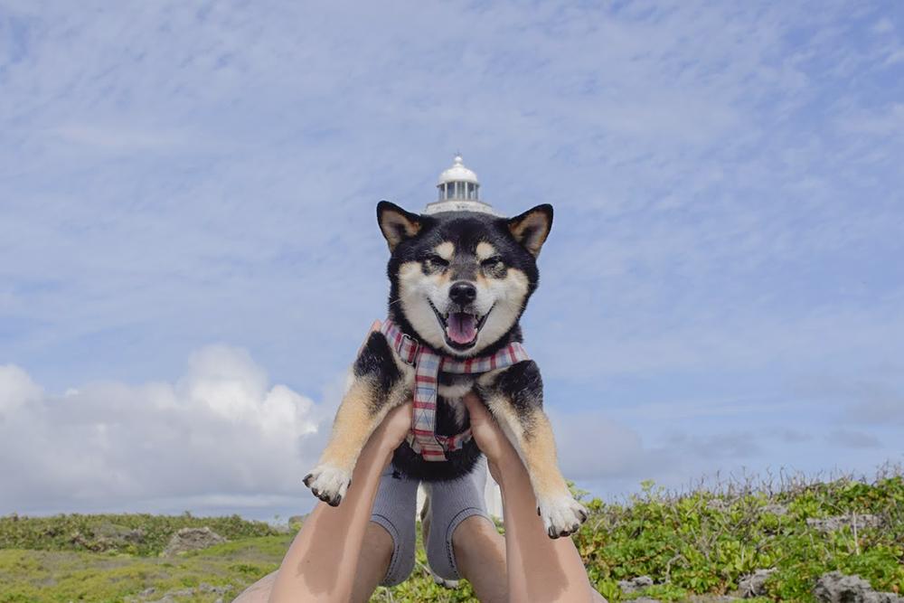 灯台が帽子みたいでしょ?