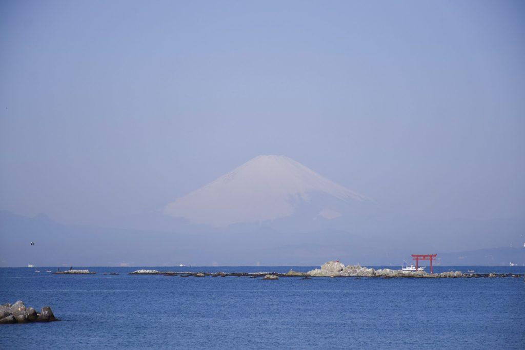 富士山を臨みます