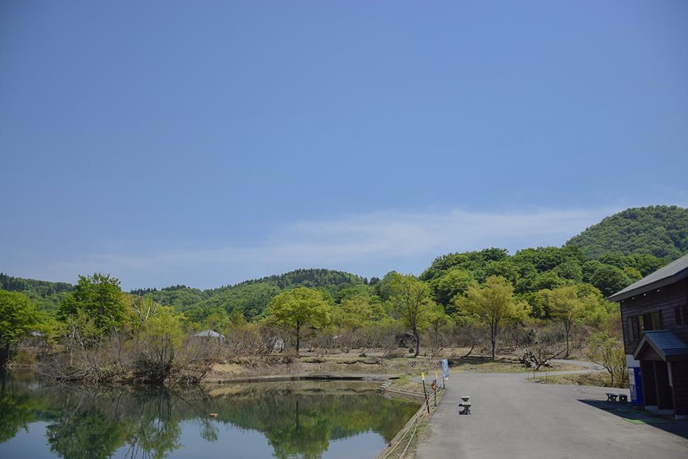 森林公園エリア