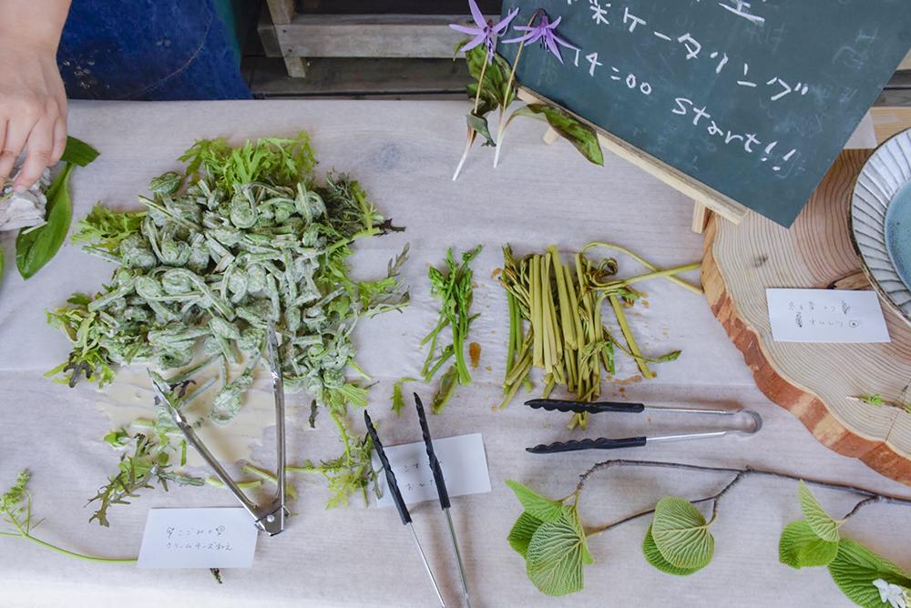 山菜がたくさん
