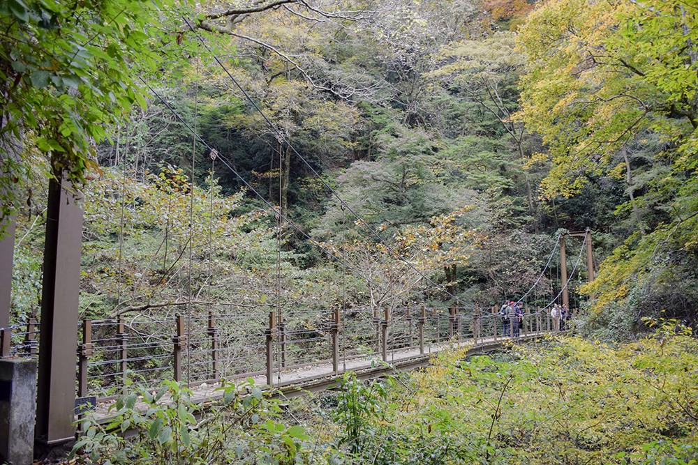 吊り橋(4号路)