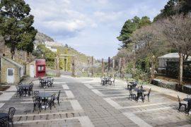 バラ園の広場
