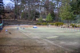 テニスコートを利用したドッグラン